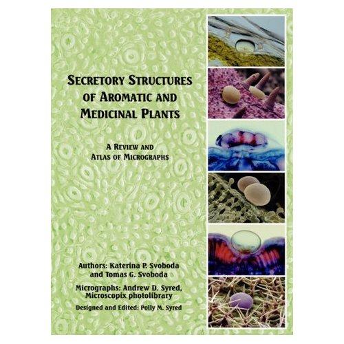 Planten anatomie en de productie van etherische olie