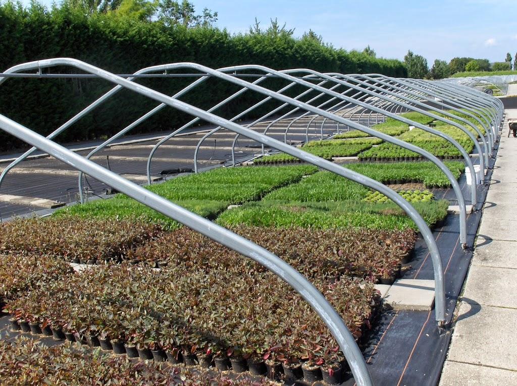 Biologische planten destilleren