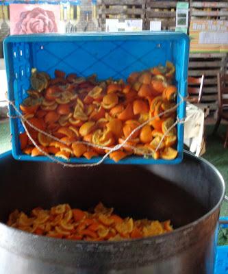 Sinaasappelschillen destilleren en analyse van sinaasappelolie