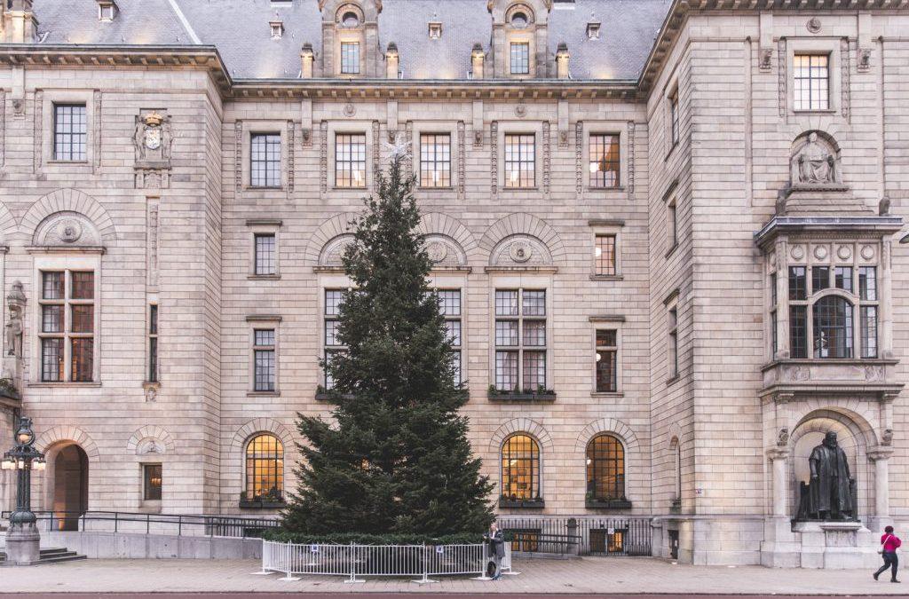 De kerstboom uit Rotterdam destilleren
